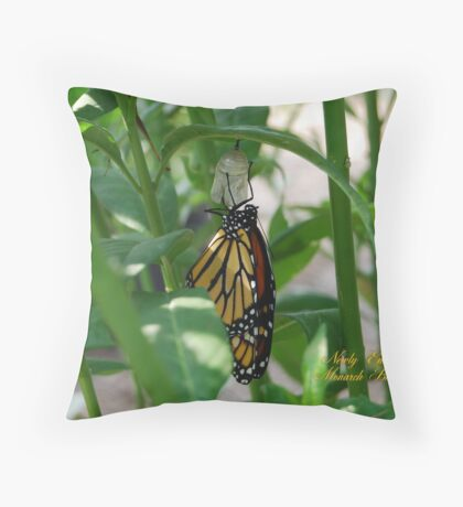 Monarch Butterfly Newly Emerged From Chrysalis Throw Pillow