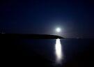 Moonlight by Svetlana Sewell