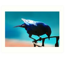 A Starling Art Print