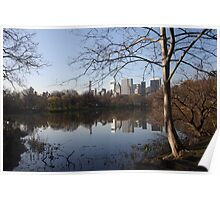 NYC Skyline from Central park  Poster