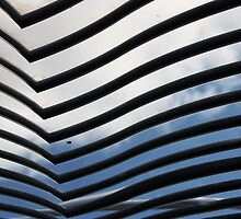 lines, shadows, reflections ... its got the blooming lot but what is it a part of? by MikeShort