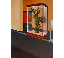 """Museum I (Python)"" Photographic Print"