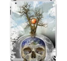 new territories iPad Case/Skin