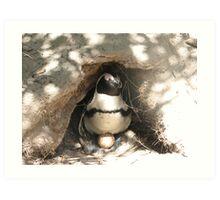 Mother Penguin Art Print