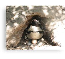 Mother Penguin Canvas Print