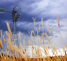 Country storm by Ashraf Saleh