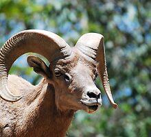 Billy Goat Gruff by Walt Conklin