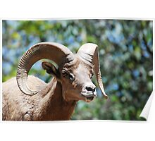 Billy Goat Gruff Poster