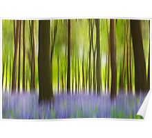 Running through the bluebell wood Poster