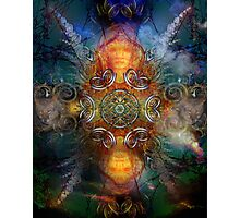 Coyote Dance  Photographic Print