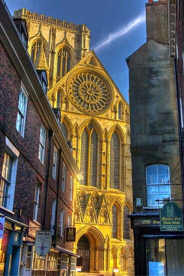 Rose Window - York Minster by Trevor Kersley