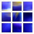 Dark Blue Dutch Iris by Kitsmumma