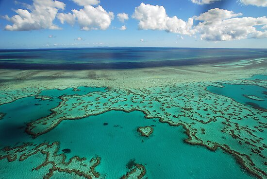 Heart Reef, Great Barrier Reef, Whitsundays by Janette Rodgers
