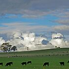 Clouds Gathering by Harry Oldmeadow