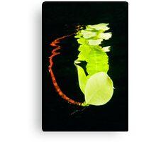 Leaf Reflection Canvas Print