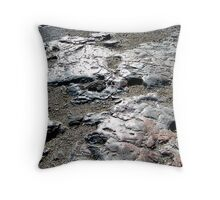 Rock Polished by Millions of Feet beside Parthenon above Athens.jpg Throw Pillow