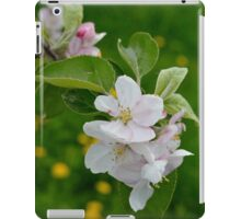 Wellwood's Spring Apple Blossoms - 6 iPad Case/Skin