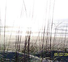 Sand Dune by Carol Knepp