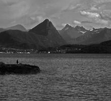 Solitary fisherman by Matt Rudge