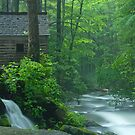The Mill by Kevin Price