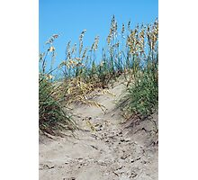 Sand Dunes Photographic Print