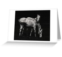 Wild Horses Greeting Card