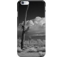Saguaro in Infrared iPhone Case/Skin