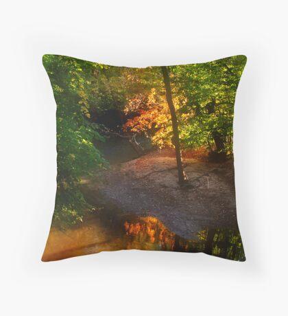 Color My Morning As Autumn Throw Pillow