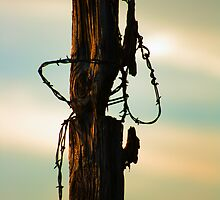 Old Fence and Barbed Wire by Richard Skoropat
