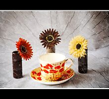Les Admirateurs Poppy by DonDavisUK