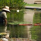 Tending the pond by Kirstyshots