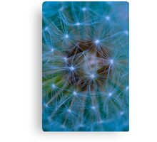 Dandelion in blue and green tones Canvas Print