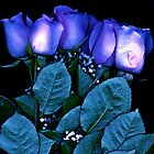 BLUE ROSES by Daniel Sorine
