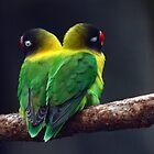 Pair of Birds by Richard Skoropat