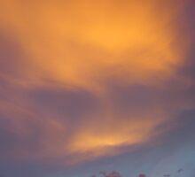 orange glow by Sherry Laird