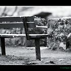 Bench by Chris Odchigue
