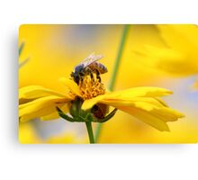 The Bee and the Ladybug Canvas Print
