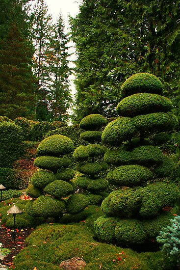 Butchart Gardens 34 by James Birkbeck