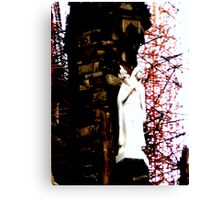 Mary Watches Canvas Print