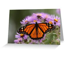 The Monarch Butterfly 3 Greeting Card