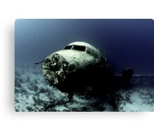 Water Landing Canvas Print