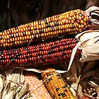 Indian Corn by Rabecca Primeau