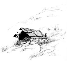 Chinese Gold Prospector's Hut by robsart