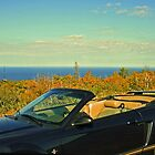 ...atop Brockway Mountain Drive... by Lynne Prestebak