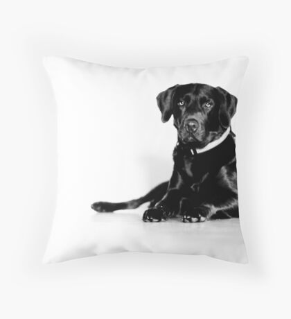 sterile environments Throw Pillow