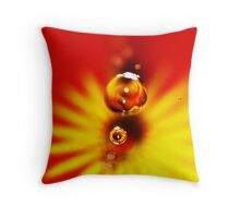 Variations on a Theme #27 Throw Pillow