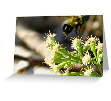 Bee Lifted Greeting Card