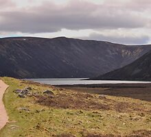 Path to Loch Muick by Darrenadie