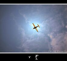 Fly by YukiNake