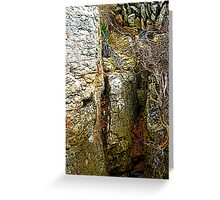 STONE FACES ON THE BEACH Greeting Card